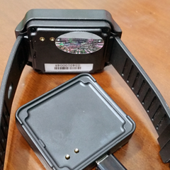 Waterproof Watch Pager Deconstructed
